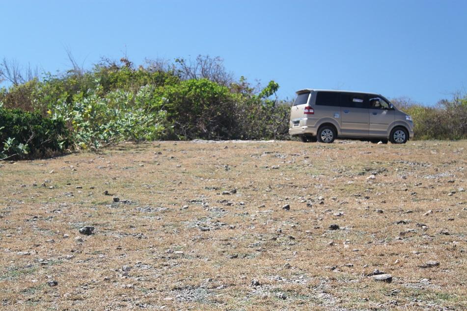Our Trustworthy Minivan