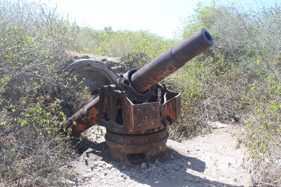 Japanese Cannon