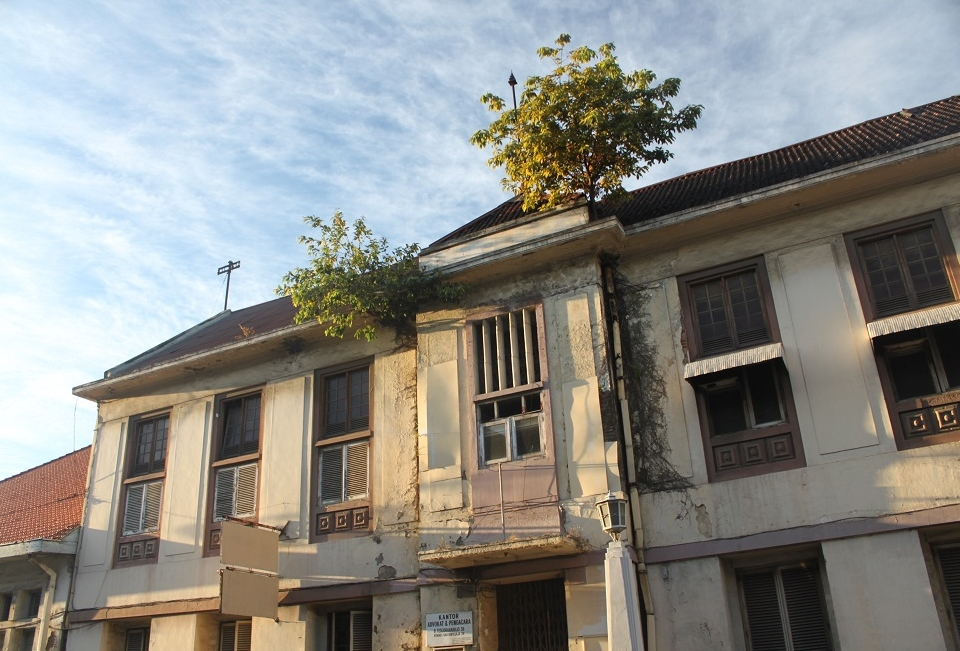 Plants Slowly Taking Control of the Old Buildings
