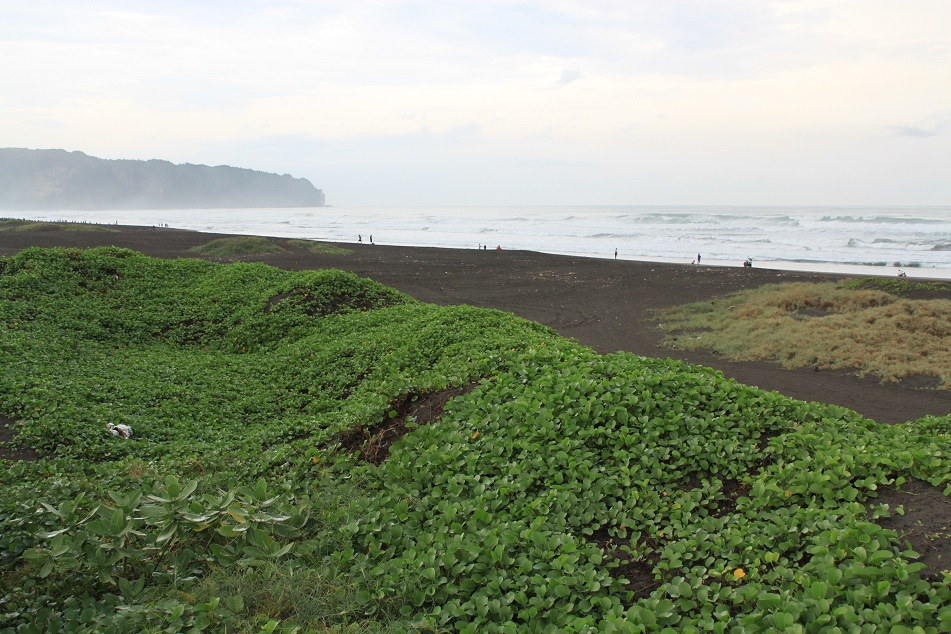 The Mystical Southern Coast of Java