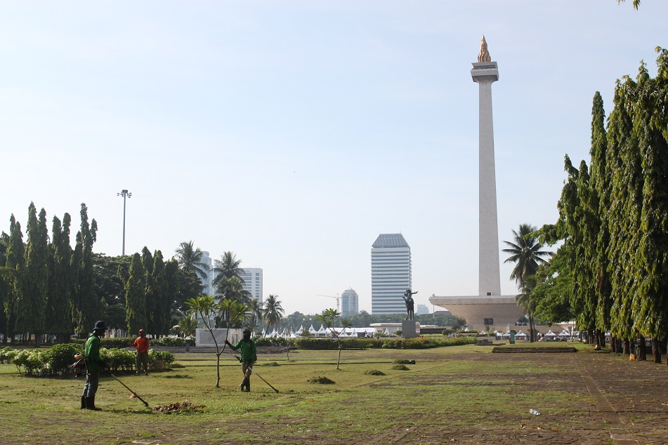 Monas, the Backyard
