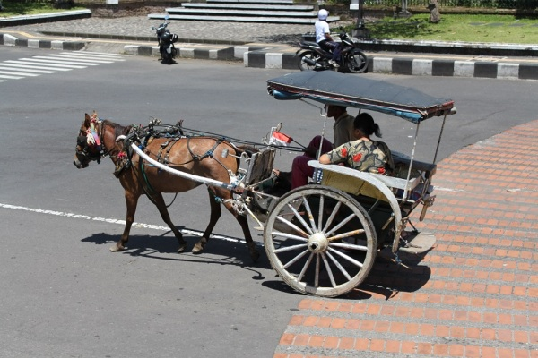 Horse-Drawn Carriage, A Vestige from the Past