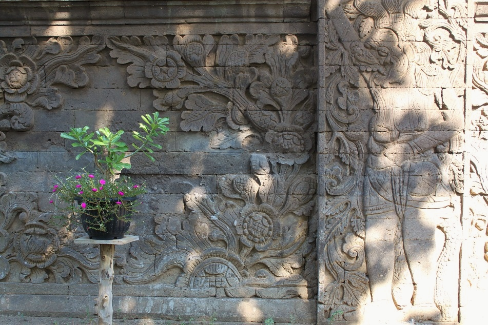 Potted Plant in front of An Unadorned Section of A Wall