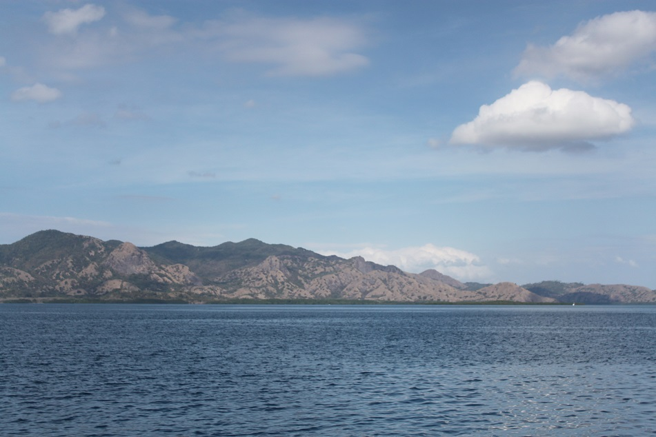 The Island of Rinca Sighted