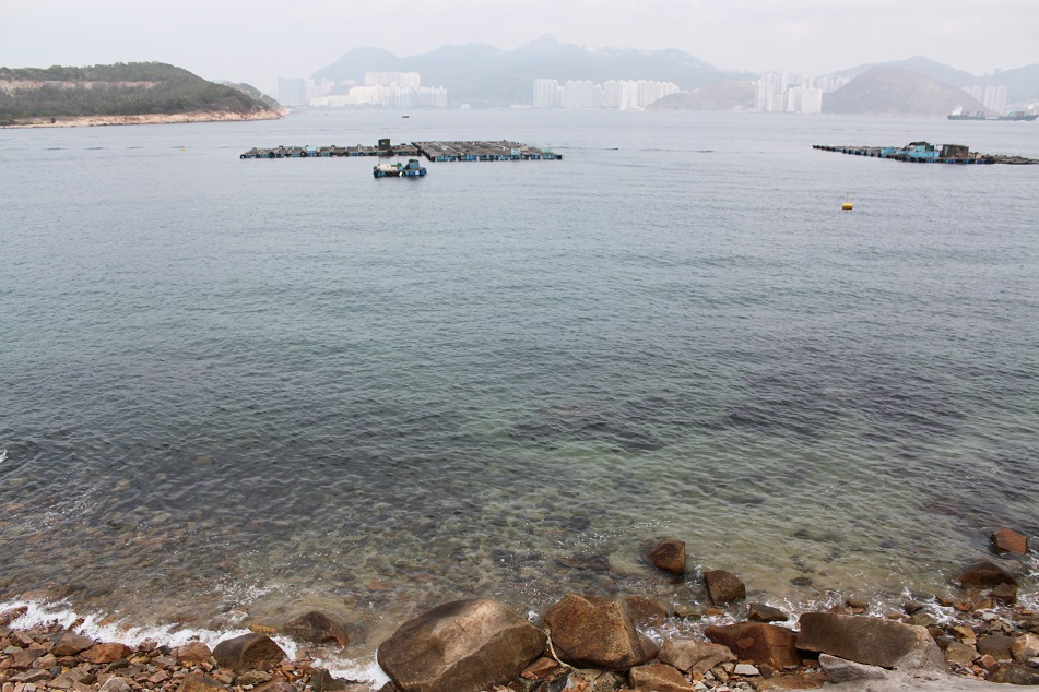 Hong Kong Island Looms in the Distance