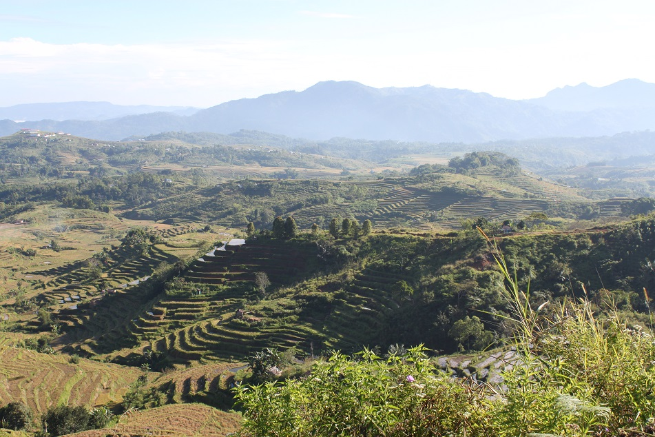 The Impossibly Expansive Rice Terraces at Kilolima, on the Way to Reo