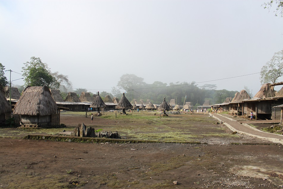 The Village of Wogo after the Mist Cleared Up