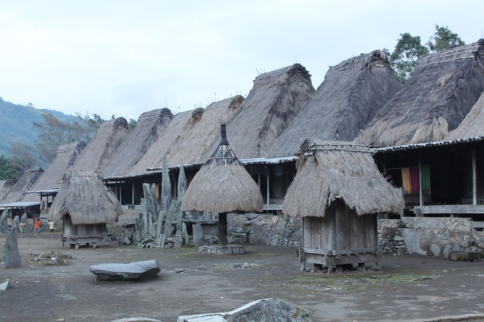 Bena's Traditional Houses