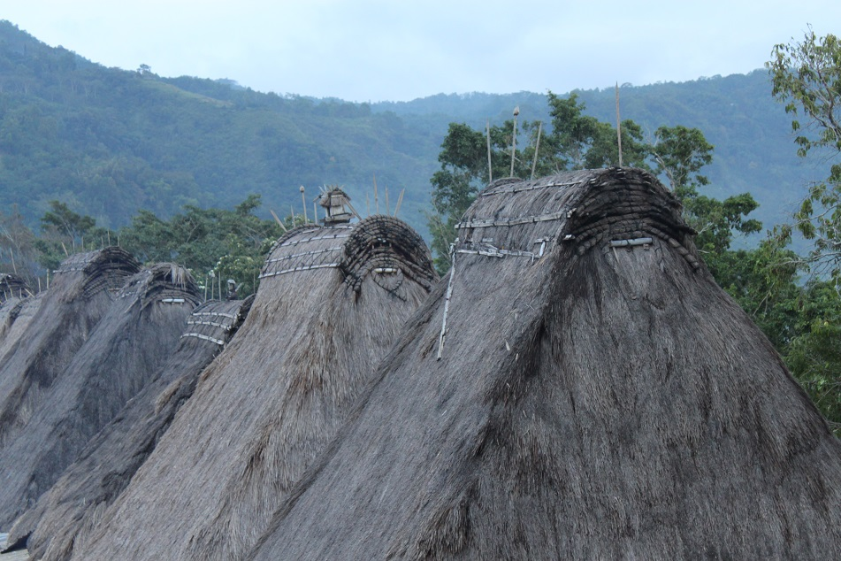 Rows of Thatched Roof