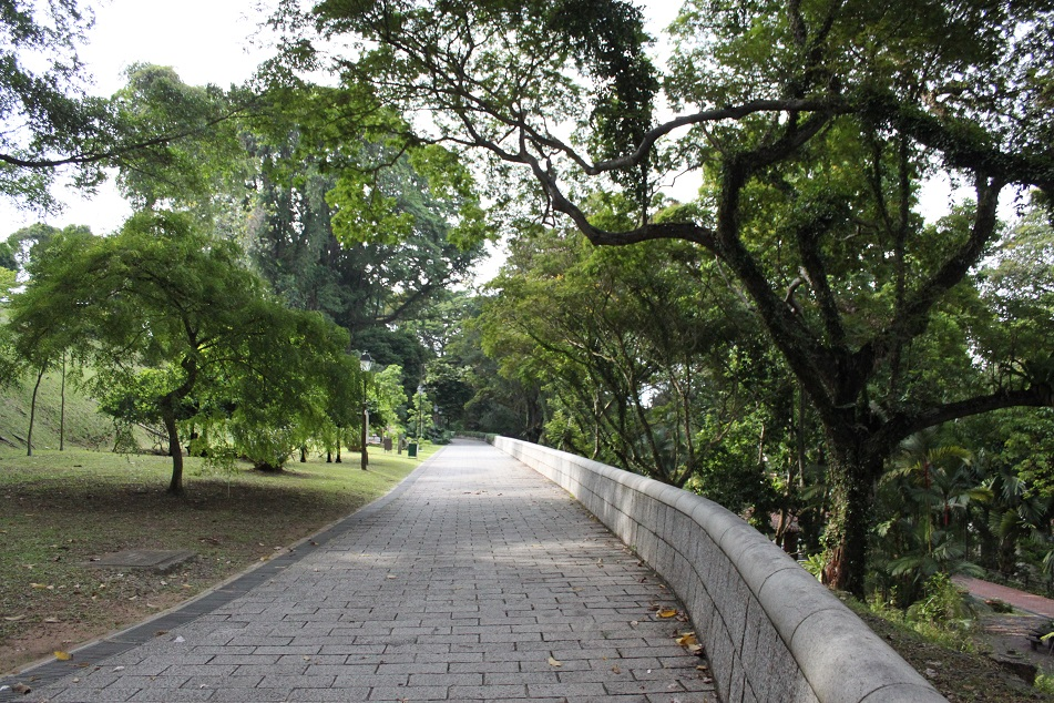A Pathway at Fort Canning Hill