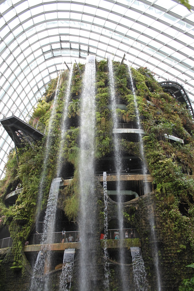 Artificial Waterfalls at the Cloud Forest