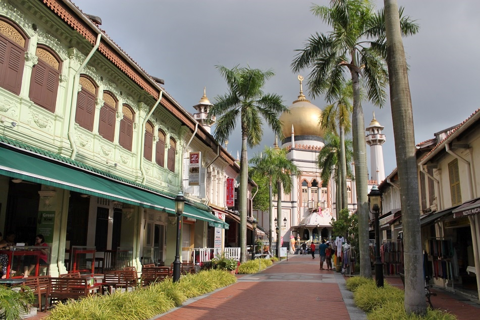Palm Tree-Lined Street at Kampong Glam