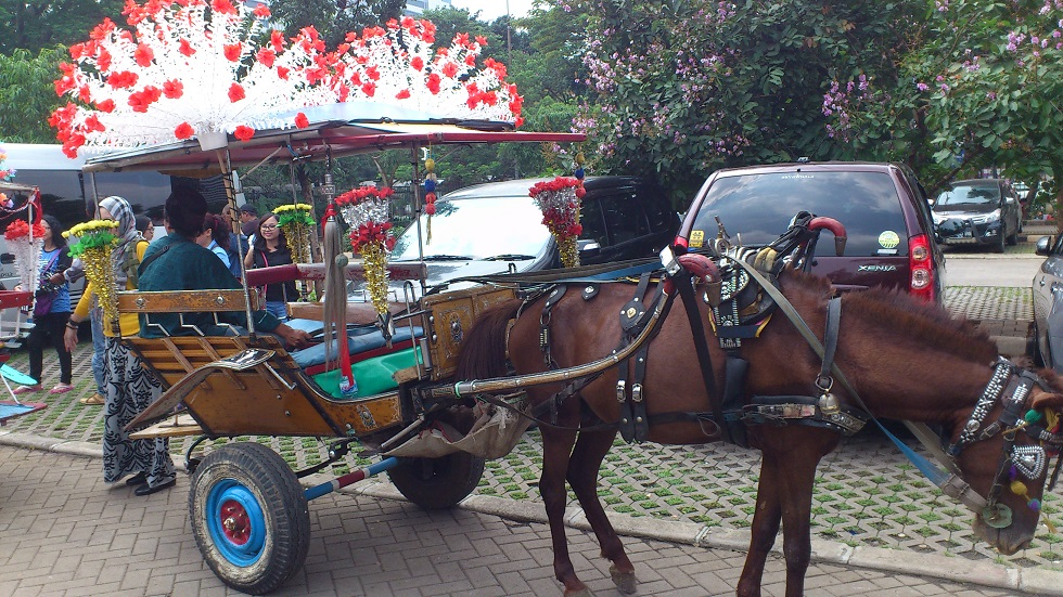 Decorated Horse-drawn Carriage