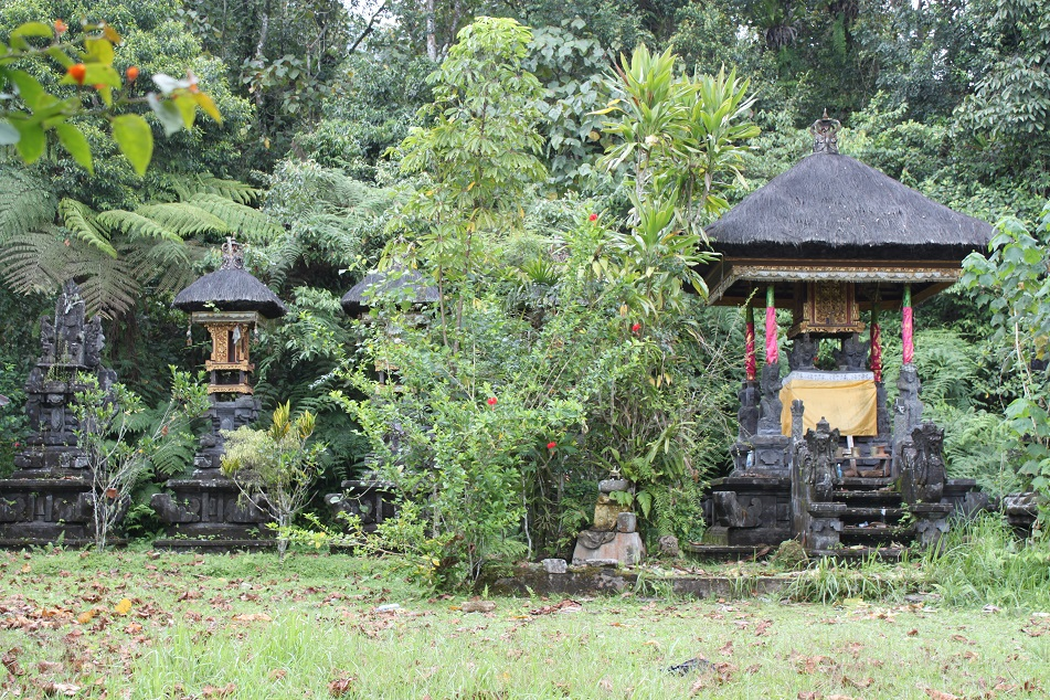 The Village's Pura Subak