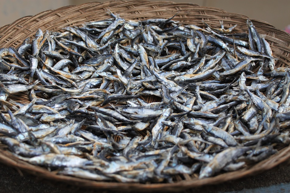 Dried Fish, Tidore