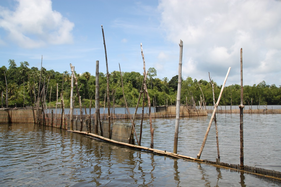 Structures for Fishing